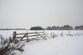 Berkel in de winter